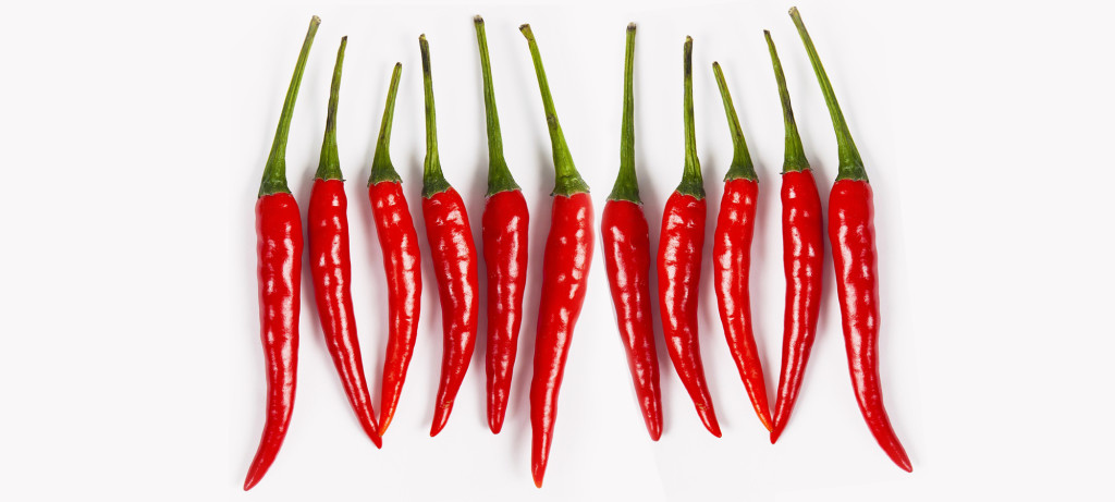 08 Dec 2010, Germany --- Red hot chili pepper on white background, studio --- Image by © Frank Lukasseck/Corbis